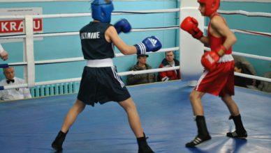 Голопристанські спортсмени взяли участь у відкритому чемпіонаті Херсонщини з боксу серед школярів